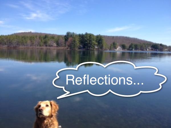 Smarketing reflections resized 600