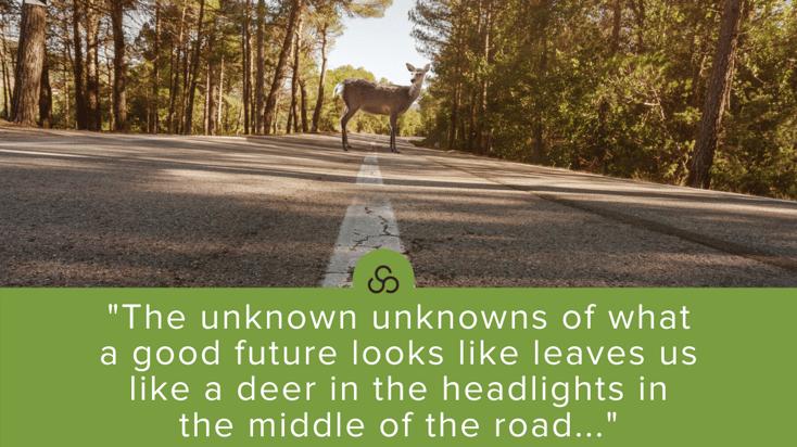 Deer in the road quote