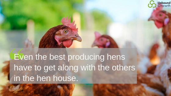 hens and hen house and sales